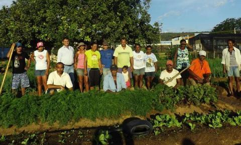Agricultura Familiar é fortalecida através da Horta Comunitária em Parnaguá