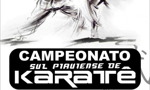 Campeonato Sul Piauiense de Karatê é neste final de semana!