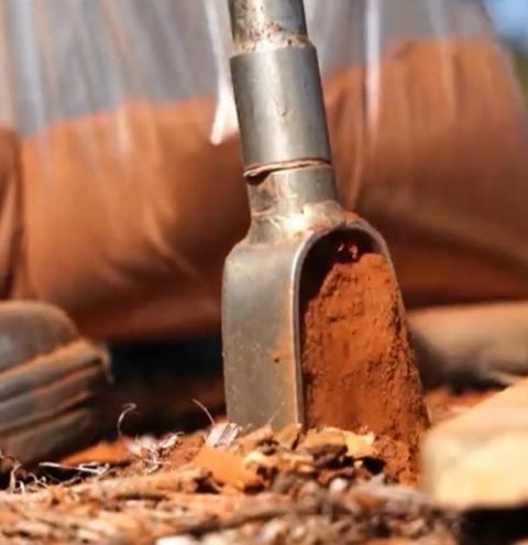 Embrapa Cerrados desenvolve 'exame de sangue da terra' que promete revolucionar a análise de solo