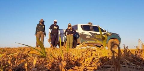 Semar retoma vistorias ambientais na região dos Cerrados