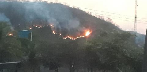 Incêndio na região das Matas, em Santa Filomena, dura vários dias e continua avançando