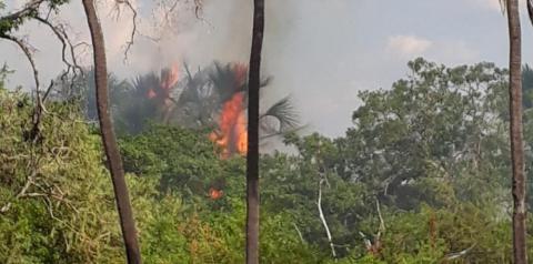 Incêndio atinge o Brejo dos Buritis em Gilbués