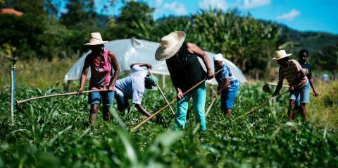 Wellington trata da retomada de projetos com o Fundo Internacional de Desenvolvimento Agrícola para o Piauí