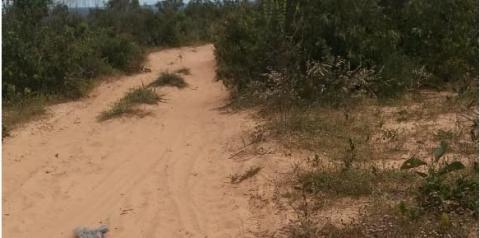 Câmara de Gilbués aprova requerimento que solicita a roçagem das estradas da zona rural