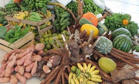 Prefeitura de Sebastião Barros abre Chamada Pública para aquisição de gêneros alimentícios da agricultura familiar