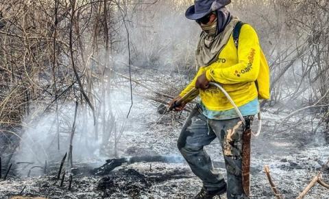 Brigadistas enfrentam calor de 70 graus no Parque Nacional da Serra da Capivara; fogo foi controlado pela 2ª vez