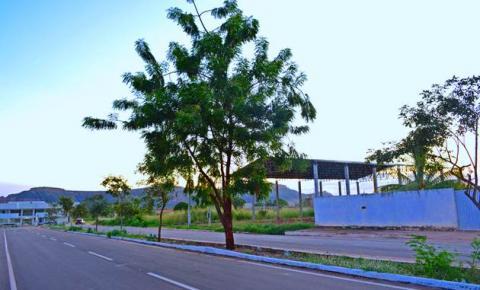Superintendência de Meio Ambiente orienta moradores sobre o projeto de arborização