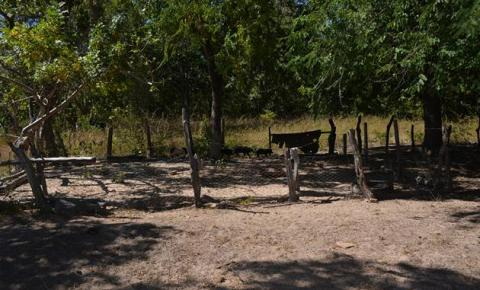 SUMAR fiscaliza denúncia na zona rural de Corrente