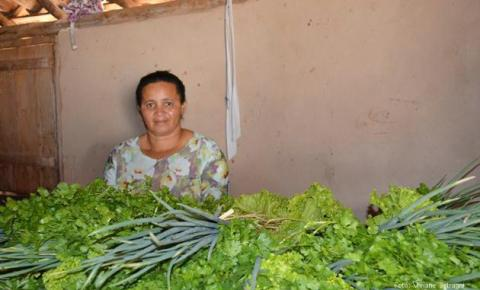 Secretaria de Educação de Corrente faz chamada pública para aquisição de gêneros alimentícios