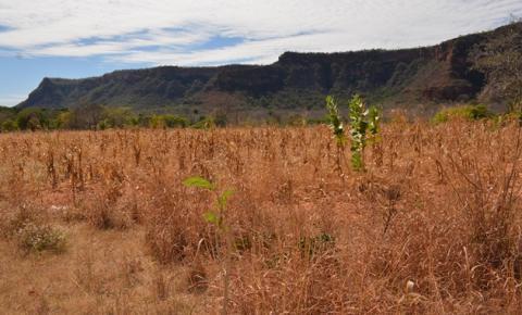 Pequenos produtores rurais de Corrente recebem a primeira parcela do Seguro Garantia Safra