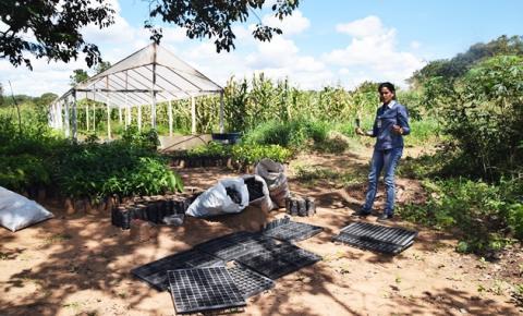 ONG realiza doação de implementos para produção no viveiro de mudas de Corrente
