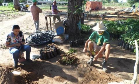 Secretaria Municipal de Desenvolvimento Rural Realiza Projeto de Recuperação de Brejos