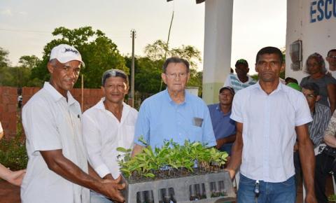Prefeitura de Corrente repassa mudas de mangabeira às associações dos Pastores e Boqueirão do Riacho Grande