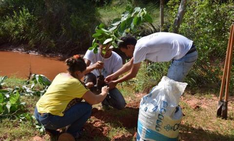 Mata ciliar do rio Corrente recebe plantio de árvores nativas
