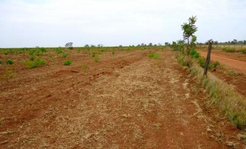 Justiça bloqueia acesso a mais de 124 mil hectares do