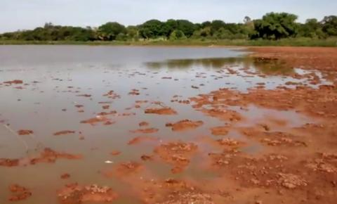 Moradores do Barro Alto, zona rural de Corrente, denunciam crime ambiental