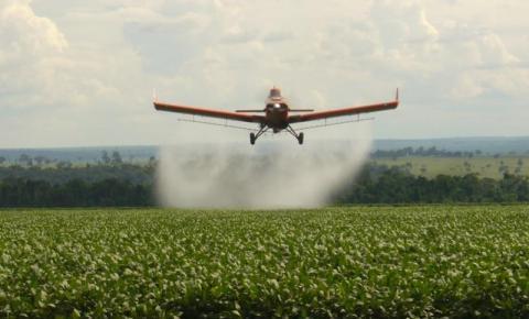 Comunidade denuncia contaminação das nascentes e brejos com agrotóxico das grandes plantações em Corrente