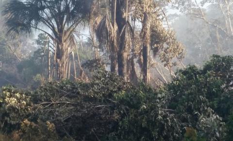 Fogo nas veredas e brejos de São Gonçalo assusta moradores da região