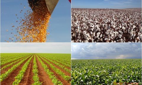 Agricultores da Coaceral estão apreensivos sem saber se poderão plantar a próxima safra