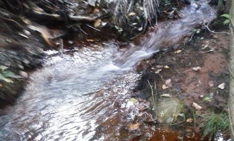 Ambientalista Jesy Jr. comenta a conquista do ICMS Ecológico para Corrente