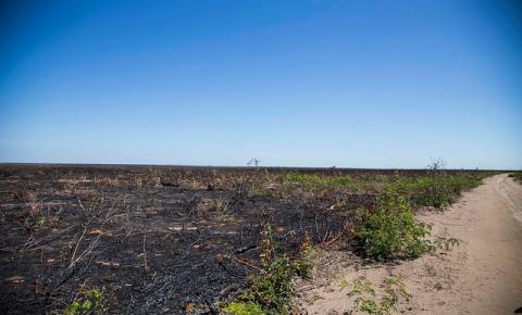 Comissão Pastoral da Terra volta a denunciar aumento da violência no Cerrado Piauiense