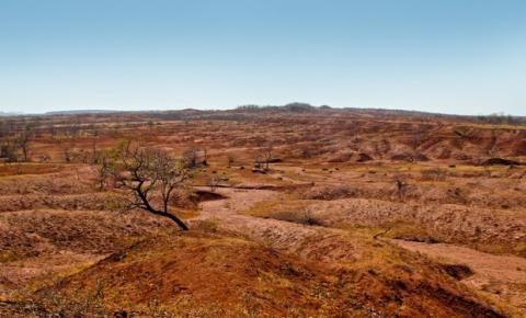 Pesquisadora contesta desertificação na região Sul do Piauí