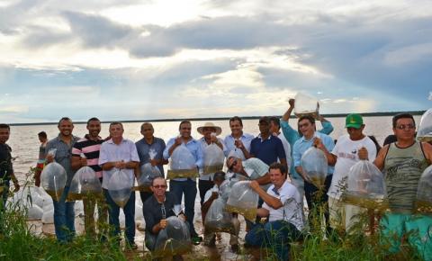 SEMAR entrega 1,5 milhão de alevinos em municípios do Extremo-Sul do Estado