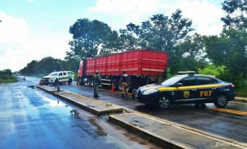 PRF apreende caminhão com 12 toneladas de madeira ilegal em Santa Filomena