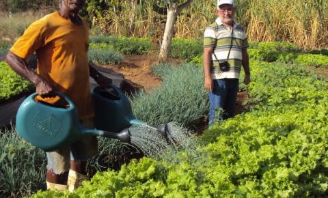 Produtores da agricultura familiar recebem incentivo da Prefeitura para estruturar a horta comunitária