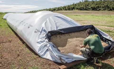 Ibama multa fazenda de Bom Jesus em R$ 220 mil por desmatamento em área de Cerrado