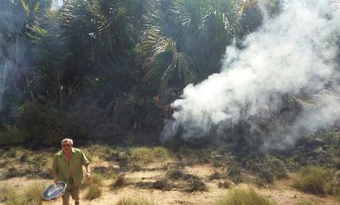 Brejo nas nascentes do Rio Gurgueia pega fogo por incêndio criminoso