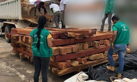Secretaria de Meio Ambiente faz apreensão de madeira ilegal em Formosa do Rio Preto
