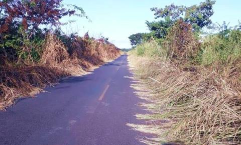 Mato toma conta da PI 255, rodovia que liga Corrente a Parnaguá