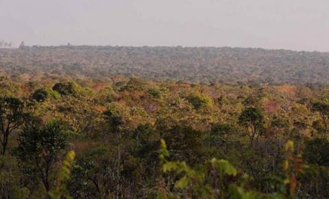 Governo fará inventário de parques e florestas para gerar crédito de carbono