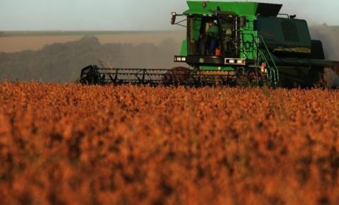 Pioneirismo em fazer três safras é revolução da agropecuária brasileira