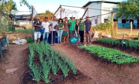 Estudantes de Agronomia de Corrente desenvolvem horta 100% orgânica