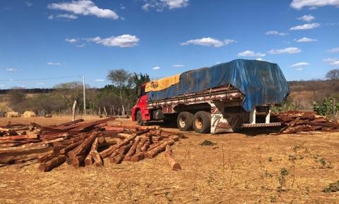 PRF e Polícia Civil apreendem caminhões e prendem duas pessoas por crime ambiental no município de Morro Cabeça no Tempo