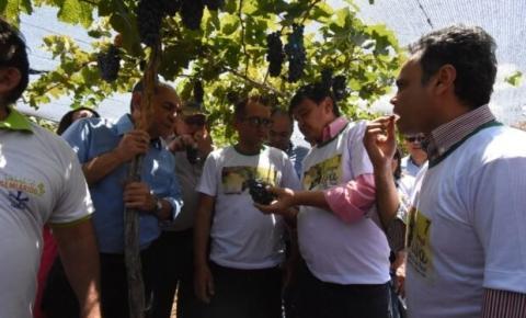 Governo e produtores vão investir na ampliação de fruticultura no Piauí