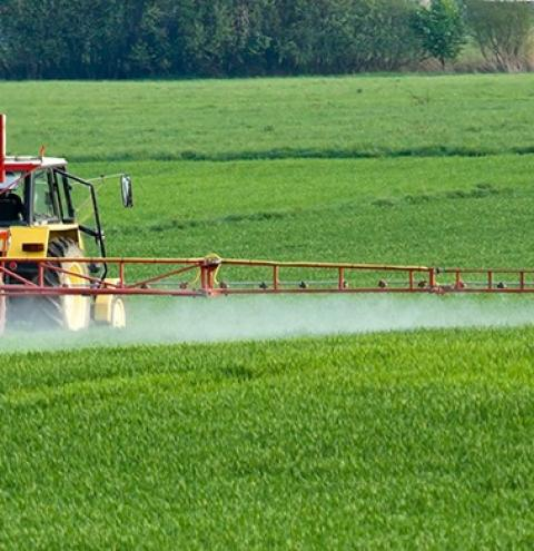 Justiça Federal determina reavaliação de vários agrotóxicos e suspensão dos registros em 30 dias