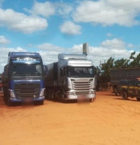 PRF apreende 3 carretas de madeira ilegal sendo transportada na BR 135