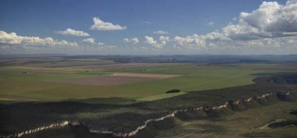 Aprosoja Piauí comemora o avanço da regularização de áreas no cerrado