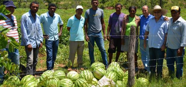 Produção de melancia ecológica e de qualidade bate recorde e muda a economia da localidade Pastores