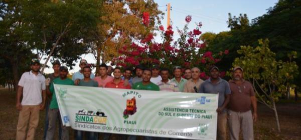 SENAR/PI promove curso de inseminação artificial em Corrente